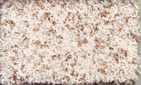 高档尼龙地毯―贵族系列